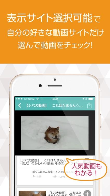 いぬ犬動画まとめ DOG TUBE