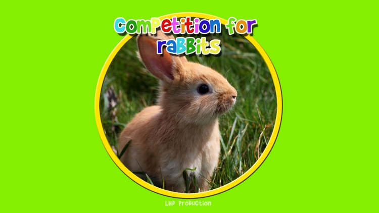 competition for rabbits - free game screenshot-0