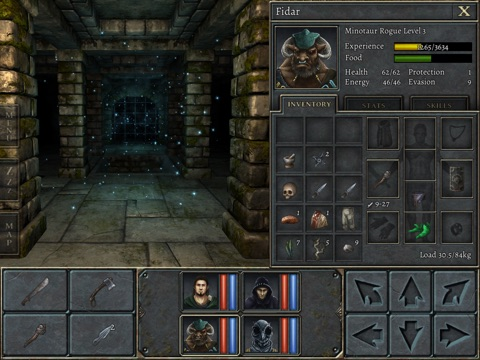 Legend of Grimrock на iPad