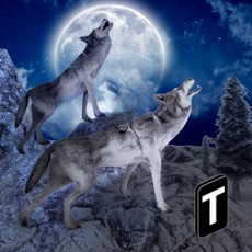 Activities of Angry Wolf Simulator 3D