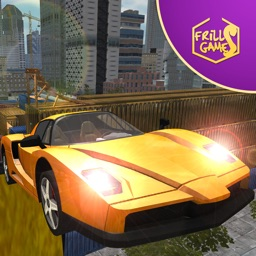 Fast Car Driving Simulator For Extreme Speed