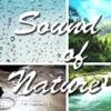 自然のリラックスサウンド