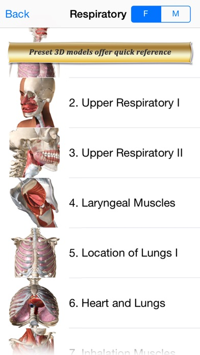 Respiratory Anatomy Atlas: Essential Reference for Students and Healthcare Professionalsのおすすめ画像2