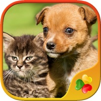 Codes for Cute Pets - Real Dogs and Cats Picture Puzzle Games for kids Hack