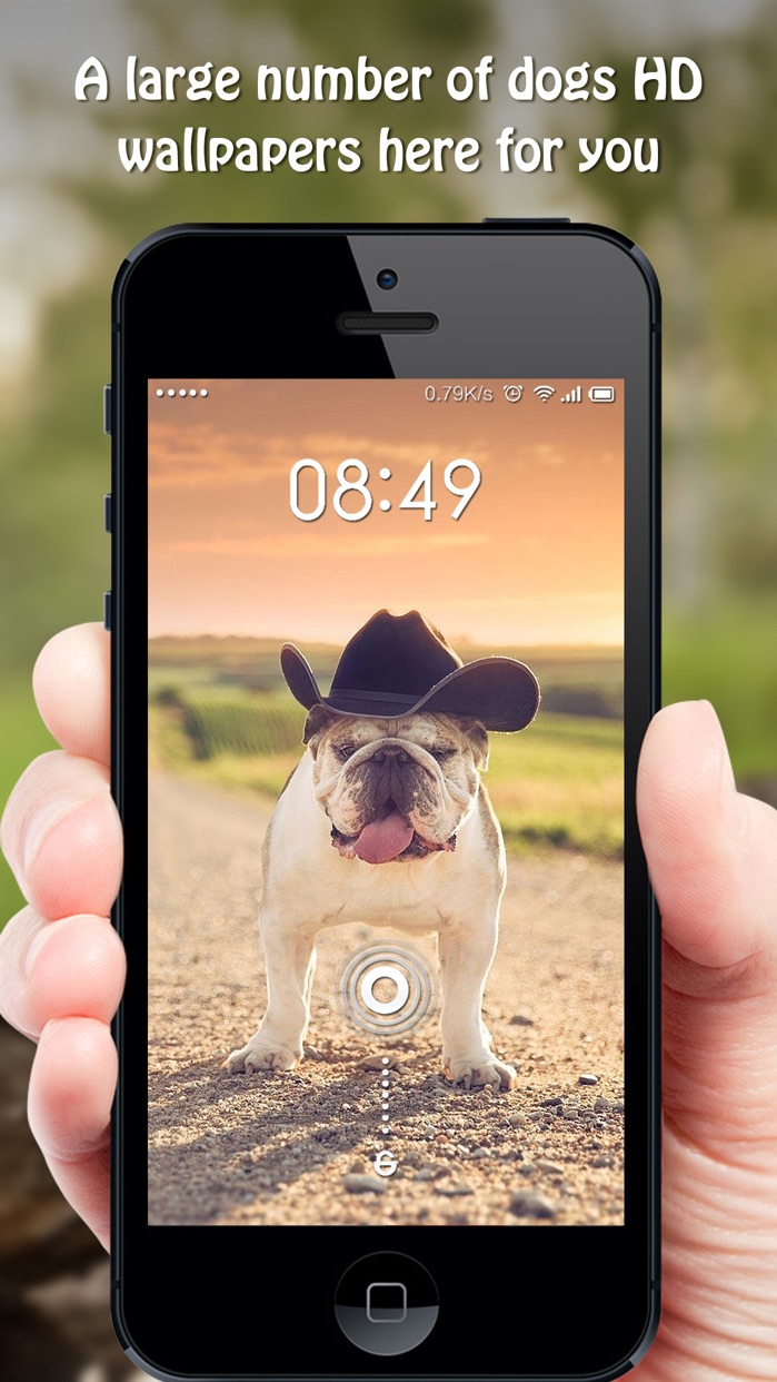 Dog Wallpapers & Backgrounds HD - Home Screen Maker with Cute Themes of Dog Breeds Screenshot