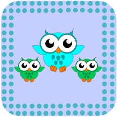Activities of Paint the Little Owls