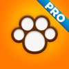 Perfect Dog Pro – Ultimate Breed Guide To Dogs