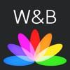 Pop Wallpapers & Backgrounds - iPhoneアプリ