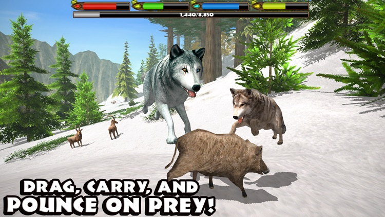 Ultimate Wolf Simulator screenshot-2