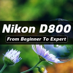 iD800 - Nikon D800 Guide And Review