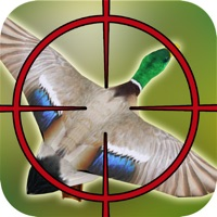 Codes for Duck Hunting: Angry Shooting Game Hack