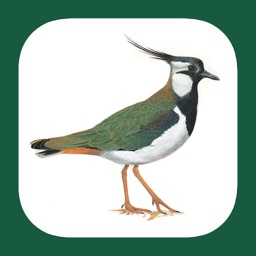 eGuide to the Handbook of Bird Identification for Germany and Switzerland