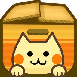 Cat Box Puzzle