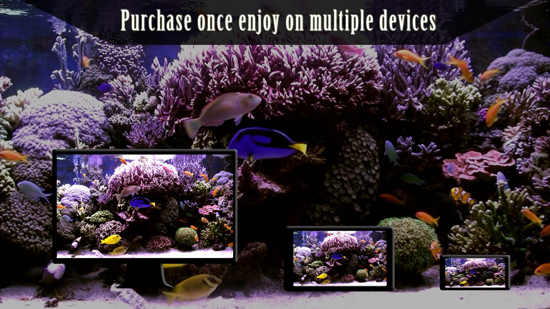 Peaceful Aquarium HD screenshot 12