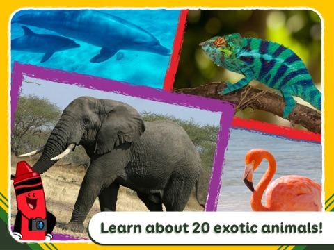 Crayola Colorful Creatures - Around the World!-ipad-4