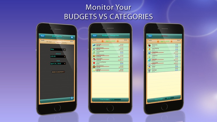 Home Budget Manager HD for iPhone screenshot-3
