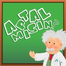 Activities of Aptal Mısın?