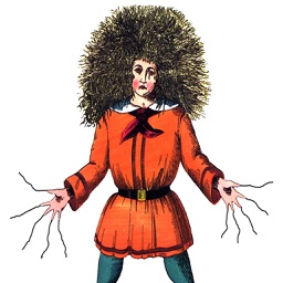 Struwwelpeter Shock Headed Peter