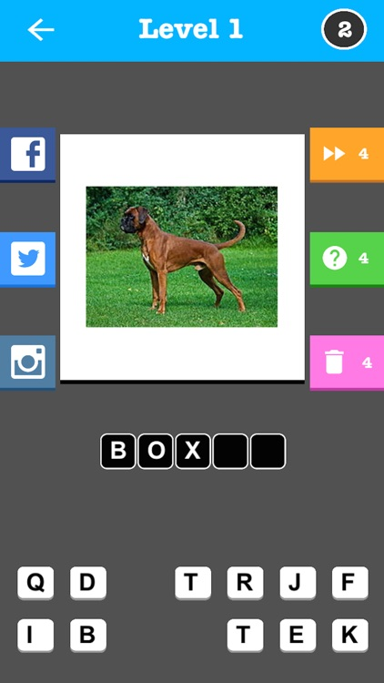 Dog Breed Trivia Game