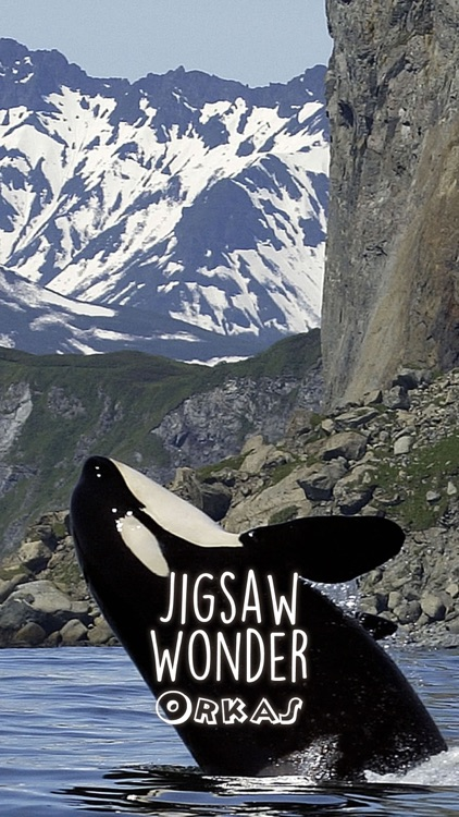 Orca Puzzles for Kids Free Jigsaw Wonder Edition screenshot-3