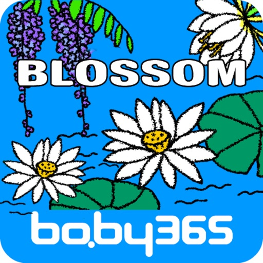 Flowers-baby365 icon