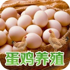 中国蛋鸡养殖平台 icon
