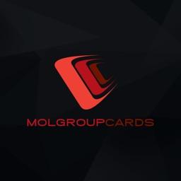 Molgroupcards Station Finder