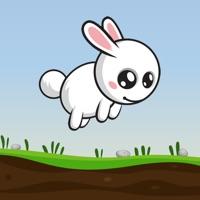 Codes for Bunny Escape - Cute Rabbit Care Hack