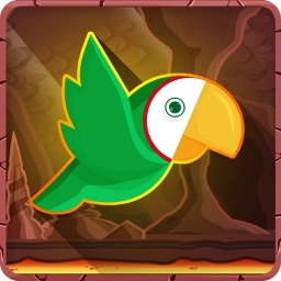 Super Parrot -The Adventure of a Tiny Bird Parrot