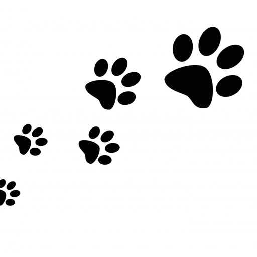 Paw Print Wallpapers HD: Quotes Backgrounds Creator with Best Designs and Patterns