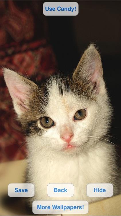 Cute Pets Slideshow & Wallpapers (HD) screenshot-4