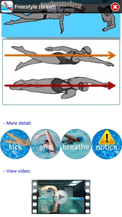 Swimming Step by Step