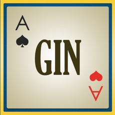 Activities of Gin Rummy Free Plus