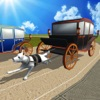 Dog Cart Race : sled dog race by driving  wagons