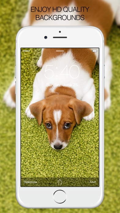 Puppy Wallpapers – Cute Puppy Pictures & Images screenshot two
