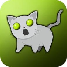 Activities of Zombie Kitten Attack