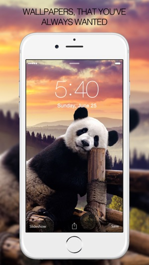 Panda Wallpapers Panda Pictures Panda Images On The App Store