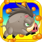 Super Pig Adventure Running Wild icon