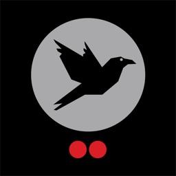 TwoDots Raven