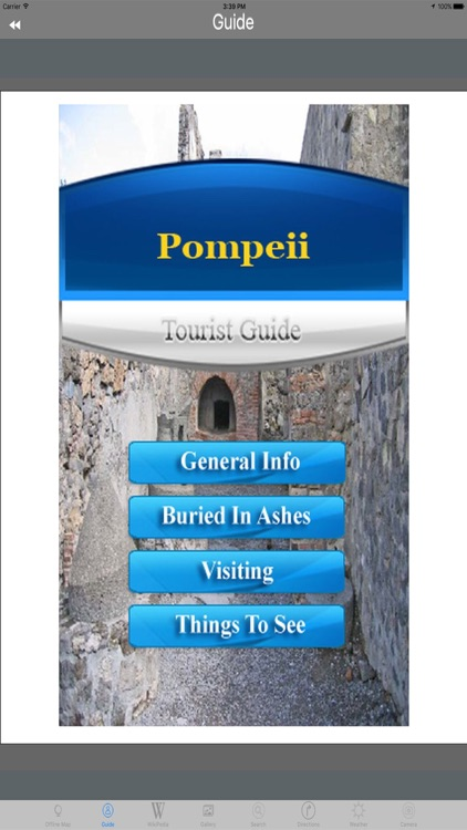 Pompeii - Italy Tourist Guide screenshot-4