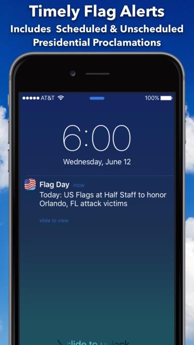 Flag Day screenshot 7