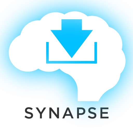 US History Synapse