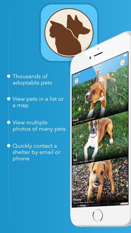 coMpanion - Pet Finder