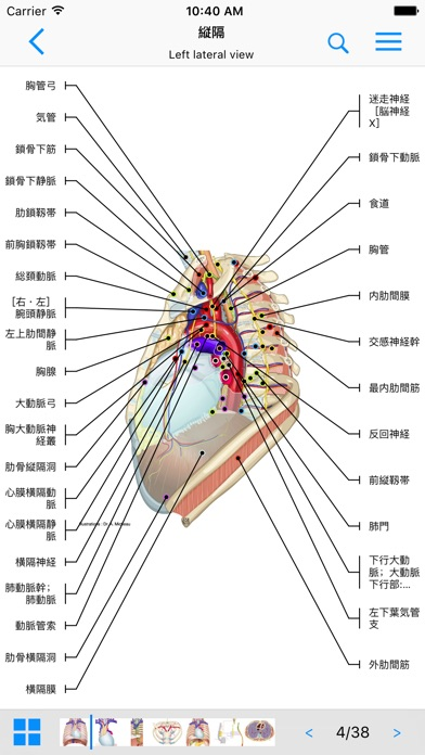 IMAIOS e-Anatomyのスクリーンショット1