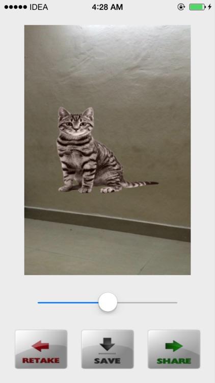 Animals Camera