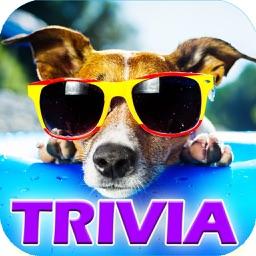 Ace Dog Breed Trivia - Free Fun Animal Quiz