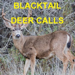 Blacktail Deer Calls Sounds