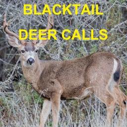 Blacktail Deer Calls Sounds