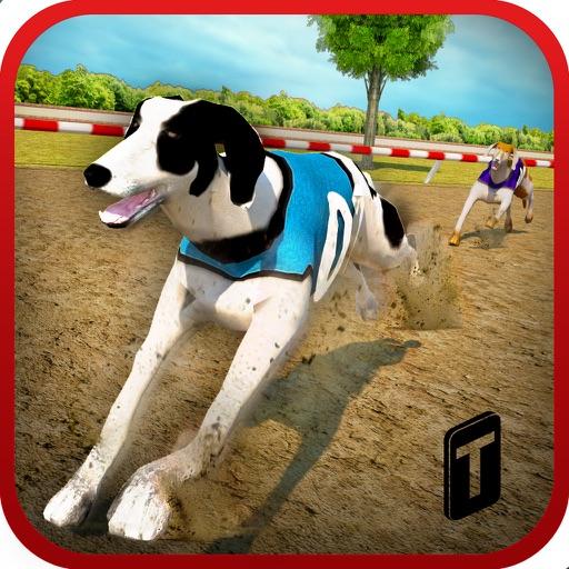 Dog Race & Stunts 2016