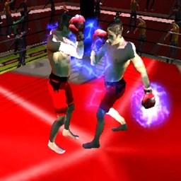 Boxing War 3D